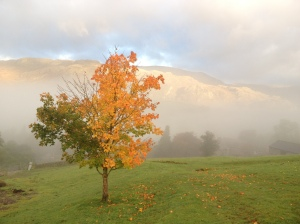 kentmere Oct2012